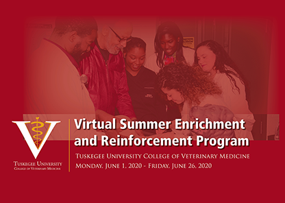 Summer 2020 enrichment program turns virtual to continue strengthening students for the Tuskegee veterinary curriculum
