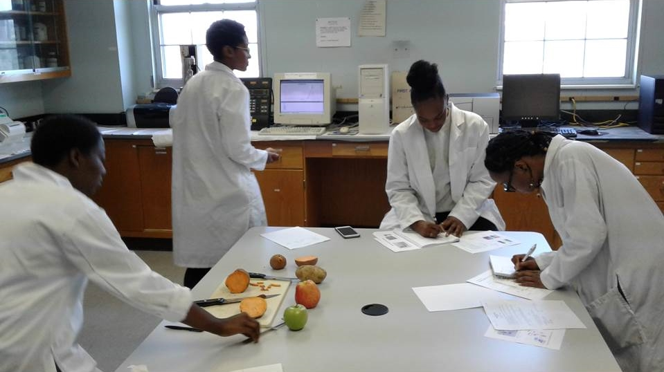 FNS students in FOSC 302 Lab performing texture & color analysis