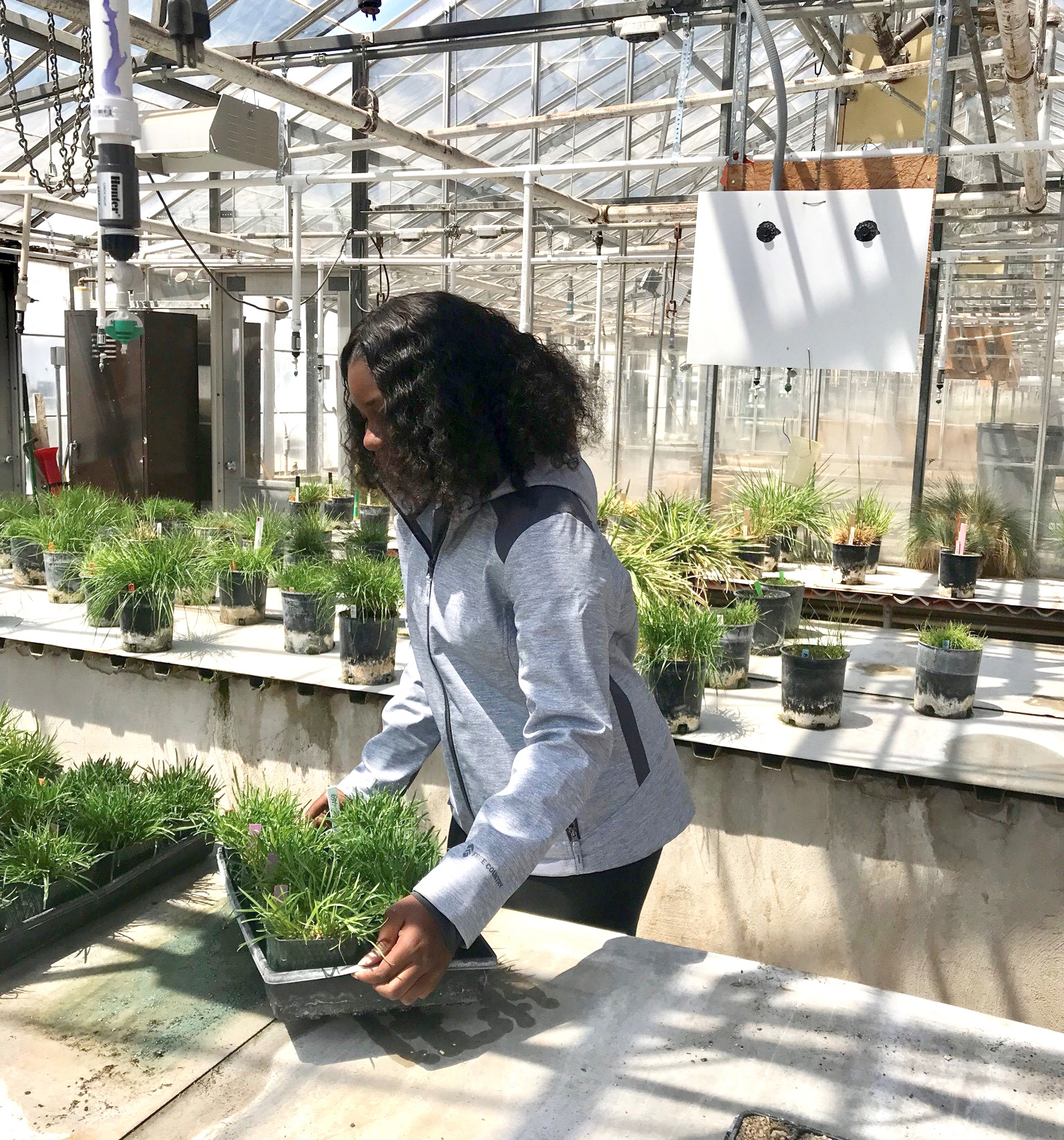 Alexandria Brown working with plants in greenhouse